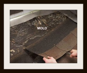 Roof Flashing Mold