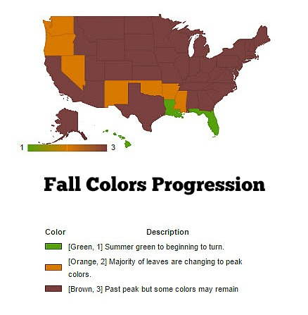 Fall Colors Progression
